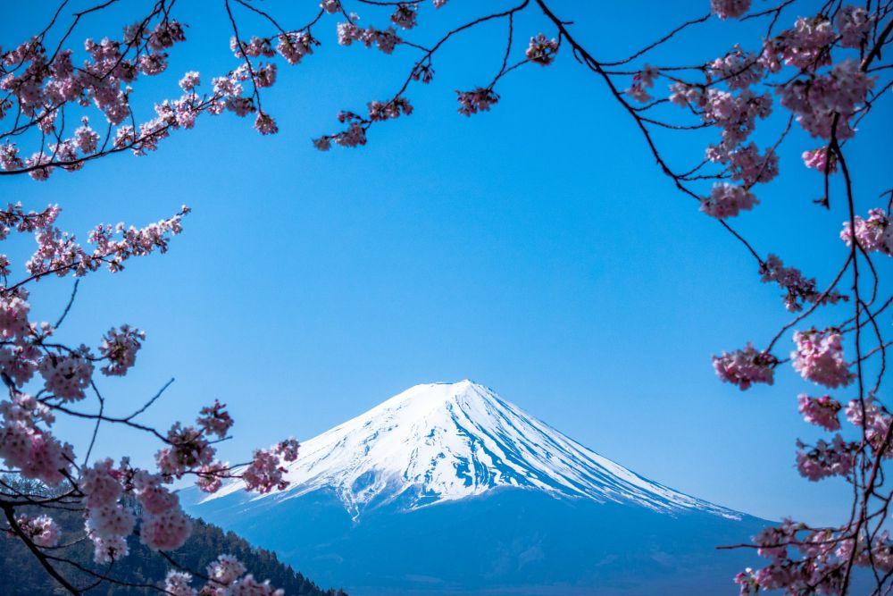 일본 부동산